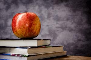 りんご食物繊維バランス